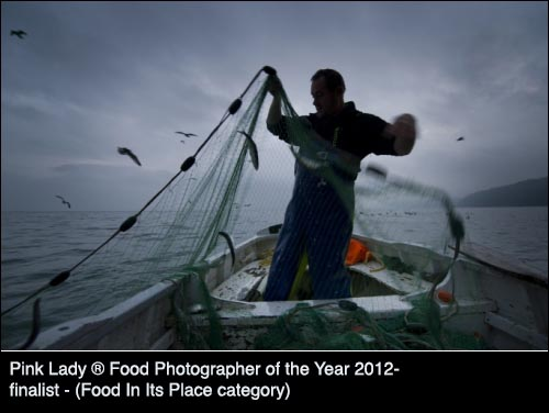 food photography blogpost