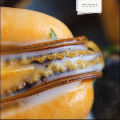 oozing restaurant mussels © Guy Harrop 2021